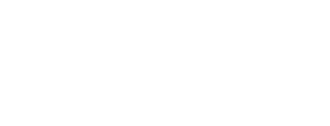 Nexia International Logo